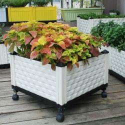 Kweekt de Plastic Opgeheven Bloem van de tuin Potten van de Planter van het Bed de Plantaardige voor Diepe Wortel