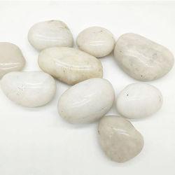 Ciottoli Polished della pietra del ciottolo del fiume bianco di alta qualità dalla Cina
