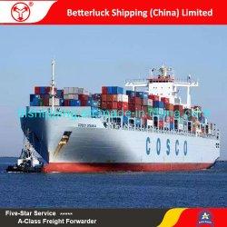 trasporto di mare da Guangzhou all'agente di trasporto dello spedizioniere di Sydney Australia
