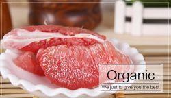 Frutas cítricas naranja de pulpa roja nueva llegada de la miel pomelo fresco