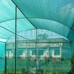Nouveau maillage vert de l'Agriculture en plastique HDPE pare soleil/ombrage Net avec UV (RPS-BL01)
