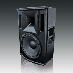 """Hoge Macht 12 de """" Professionele PROAudio van de Luidspreker (hoogste-112)"""