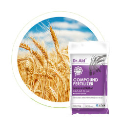 Ajuda de DR de NPK 25 14 6 amino ácidos húmicos fertilizante nitrogenado Humate alta para o arroz