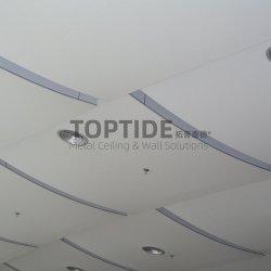 Custom Double Buding Exterieur Aluminium / stalen wand plafond Decorative Paneel