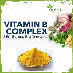 A Medicina garantida Grau Grau Alimentício Vitamina B remessas a granel de pó complexas