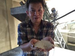 Sirup-Produktionszweig des Reis-30mtpd/Reis-Sirup-Gerät