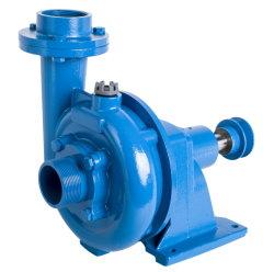 Bauernhof-Gebrauch-Riemen-Wasser-Pumpe Dacheng-DCT 2HP 3HP