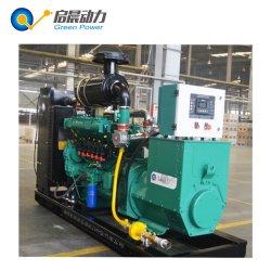 50kw 100 kw 150 kw 200 kw générateur de gaz Le gaz naturel de biogaz générateur de GPL