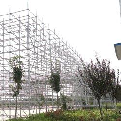 Impalcatura standard verticale per la costruzione di Ringlock