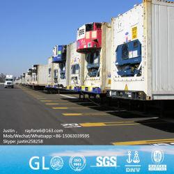 10FT 20FT 40FT de Gekoelde Containers van de Lading/Koelere Container