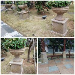 China G603/G687/G617/G682 Flor de granito Pot/Pedra vasos