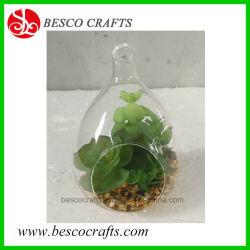 Verre artificiel Bonsai Plantes Succulentes Plantes pour la décoration de table
