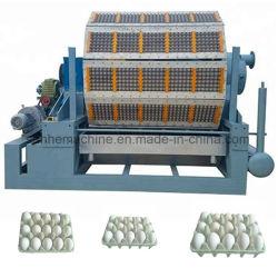 Bagaço biodegradáveis de Celulose tabuleiro de ovos da linha de produção