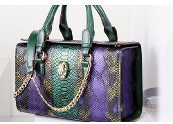 Змеи ткани леди дамской сумочке женщин дамской сумочке дамы сумочку мода дамской сумочке Designer дамской сумочке оптовой дамской сумочке OEM/ODM дамской сумочке (WDL5122)