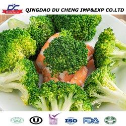 Más barato de vegetales frescos de brócoli congelado