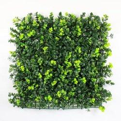На экране для установки вне помещений сады стены Искусственные растения конфиденциальности