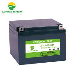 12V 30Ah Pack de batterie au lithium de lumière pour gilet de sauvetage