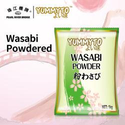 Wasabi en poudre 1 kg de raifort de haute qualité de la marque Yummyto/Wasabi POUR SUSHI
