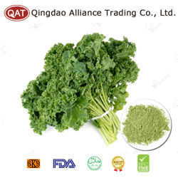 Kale congelato con alta qualità e buon prezzo