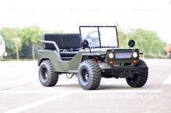 110cc 125cc 150cc de accionamento por corrente resfriado a ar Go Kart UTV