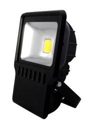 Haut de la lumière LED IP65 10W/20W/30W/50W/70W/80W/Projecteur 100W