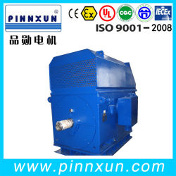 GOST 표준 고전압 전기 모터 355kw