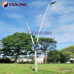 Kundenspezifischer leichte doppelte Form-Aluminiumgarten heller Pole des Arm-Y für Yard
