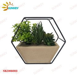 In de fabriek op maat gemaakte zeshoekige samengestelde creatieve familie Slaapkamer kantoor Desktop Decoratie Kunstmatige Altijdgroene ornamenten kunstmatige plant