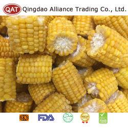 Congelados de alta calidad de mazorcas de maíz dulce