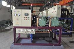 Ultra-Low Eenheid van de Compressor van het Systeem van de Koeling van Co2 Temperaturen voor het Bevriezen van Tonijn