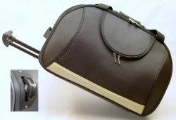 China-Manufaktur-Kleidersack-Arbeitsweg-Beutel-Laufkatze-Beutel fahrbarer Beutel