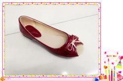 Fashion Lady coloré & Chaussures femmes