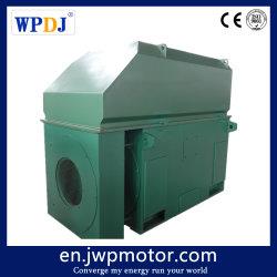 10kv 800/900/1000kw 500r/Min 3 Phasen-Induktions-Elektromotor