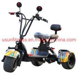 Alta bici elettrica potente della sporcizia per i capretti con le doppie sedi