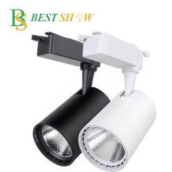 Guangzhou Ra80 CRI80 10 15 20 30 40 50 Watt voie lampe LED COB