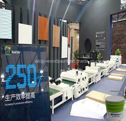 Rol die van de Fabriek van Deklaag 10 van China de Hoogste UV de UVDeklaag van de Verf van de Vernis voor Houten Bevloering met een laag bedekken