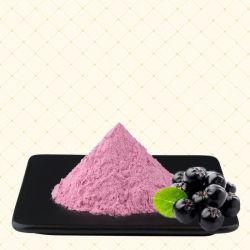 Blaubeere-Faser-Mahlzeit-Abwechslungs-Puder-Unterhalt gesund