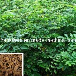 高い純度のDalbergiaのエキス