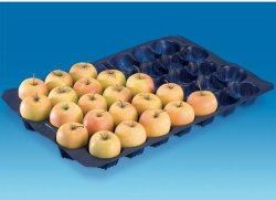 Sale popolare Polonia 39X59cm pp Plastic Apple Tray per Fruit e Vegetable Packaging