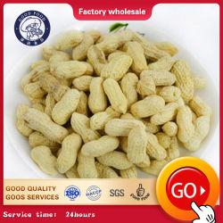 100% natural Sabor Alho amendoim torrado