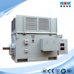 Anillo de deslizamiento 3300 V AC a 933 Kw polo 14 Motor de inducción de anillo de deslizamiento con el tamaño de fotograma Ucwx800