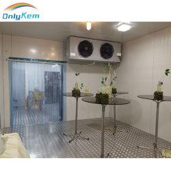 野菜のための圧縮機の冷却ユニットが付いているフリーザーかスリラーまたは冷たいモジュラー貯蔵室か魚またはフルーツ