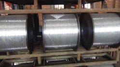 Electro 0.50mm fil en acier galvanisé