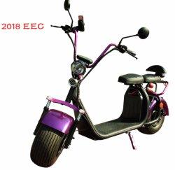 Design de patente de 2018 Modelo Quente Electric City Scooter 2000W /1500W