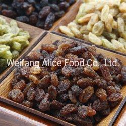 Основная часть упаковка оптовая торговля Китая Синьцзян Sultana красный изюм