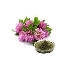빨강 거여목 추출 Trifolium Pratense L. 총 Isoflavones 8% 전식물 추출