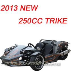 사용을%s 새로운 250cc Trike