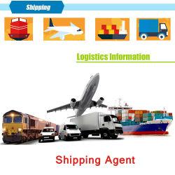 Agent d'expédition de Shenzhen en Chine aux USA par Fast DDP Sea Air Cargo porte à porte pour l'expédition