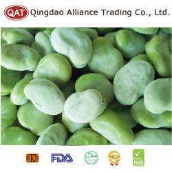 Gefrorene grüne Saubohnen mit EU-Standard