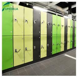 De in het groot Kasten van de Opslag van de Kleedkamer van de Gymnastiek van het Slot RFID Groene